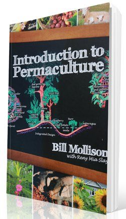 Bill Mollison permaculture ideas as contained in summary in his