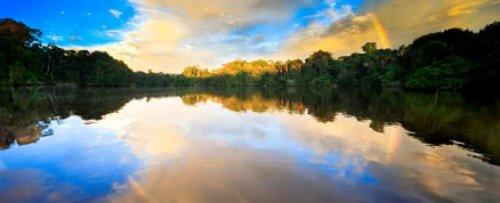 Amazonian lake with surrounding forest - iStockPhoto