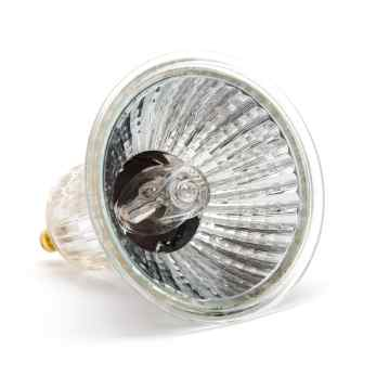 Halogen Lamp Example - iStock Photo