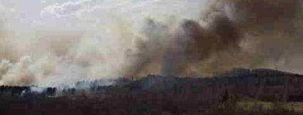 Global Warming Skeptics In Russia Changed Minds With Russian Forest Fires 2010