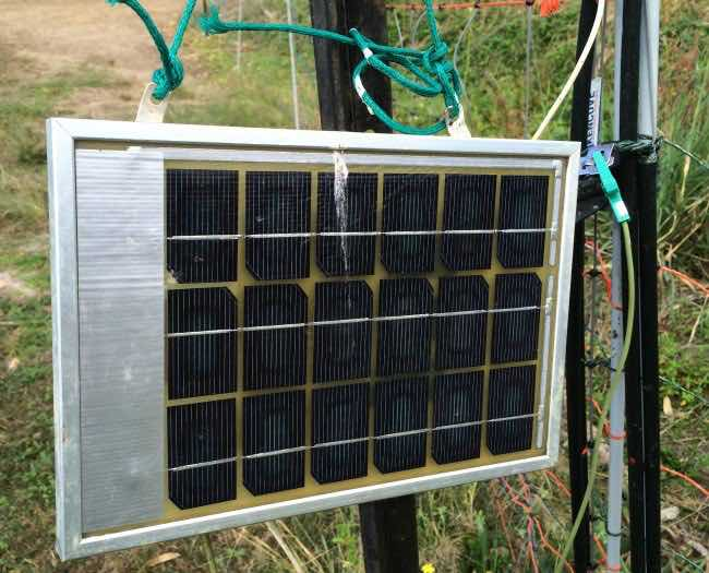 Permaculture Activist represented on Geoff Lawton's Zaytuna farm with solar panel to run an electric fence for chicken system ground management