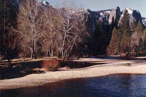 Yosemite River view