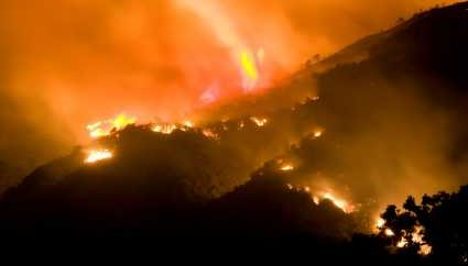 CO2 Emissions produced in a Forest Fire - iStockPhoto