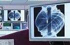 Detail of plasma in spherical tokomak from Culham UK