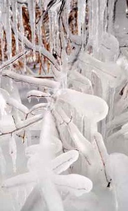 Global Warming News and Recent Freezing Northern Winters - iStockPhoto