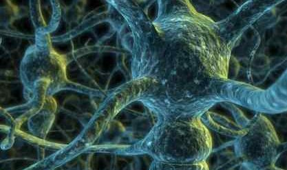 Neuron Network illustration - iStockPhoto