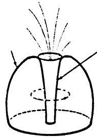 Prometheus Links Plasmak Plasma Diagram 2